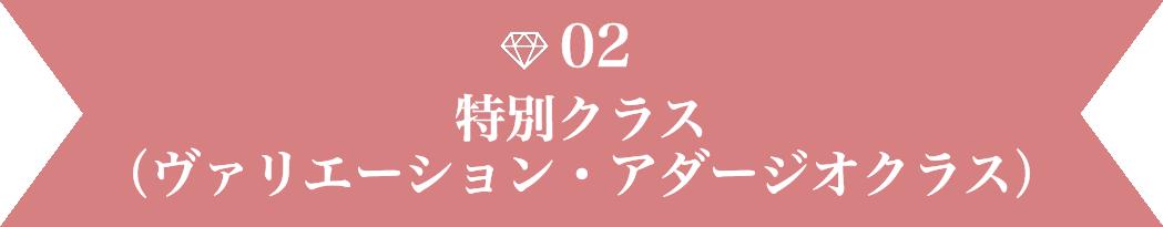 02 48 - バレエ・レヴェランスの特徴
